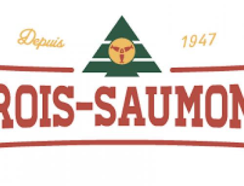 Camp Trois-Saumons – MTY